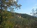 Contrada San Silvestro - panoramio.jpg