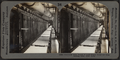 Conveyor with trays of loaf sugar received from drying kiln, New York, from Robert N. Dennis collection of stereoscopic views.png