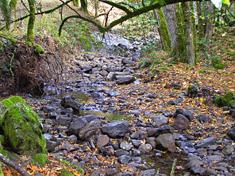 Fairfield Osborn Preserve - Copeland Creek with basalt armor in channel, Fairfield Osborn Preserve