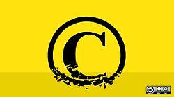 Copyright license choice (4371001458).jpg