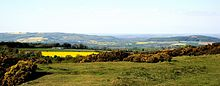 Cotswolds Cleeve Common.jpg