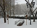 Crystal City Snow - Not-So-Snowy Staircase (4199067024).jpg