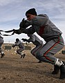 Czech soldiers train Afghan military police DVIDS233425.jpg