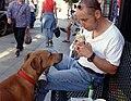 DOG watching man eat burrito in San Francisco.jpg
