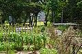 Dahukou Station Park 大湖口車站公園 - panoramio.jpg