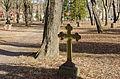 Danvikens begravningsplats Mars 2014.jpg