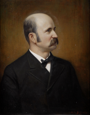 David B. Hill - Gubernatorial portrait of David B. Hill.