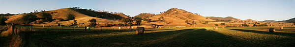 Dawn over hay bales panorama