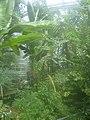 De Plantage (21).jpg