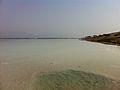 Dead sea salt (5101616694).jpg