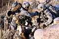 Defense.gov News Photo 101106-A-2911M-225 - U.S. Army Sgt. James Small right helps Spc. Andreas Plaza up a mountainside in the Towr Gahr Pass Nangarhar province Afghanistan on Nov. 6.jpg
