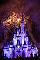 Disneyworld fireworks - 0219.jpg