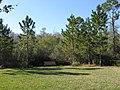 Dog Park - panoramio (7).jpg
