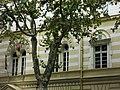 Dom svetog Save 5.jpg