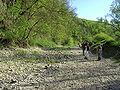 Donauversinkung.jpg