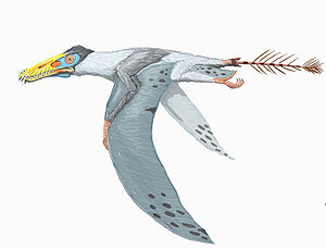 Parapsicephalus - Restoration of Dorygnathus banthensis; Parapsicephalus has been considered a member of the same genus
