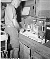 Dr Lauren R Donaldson testing fish for radioactive content, summer 1947 (DONALDSON 73).jpeg