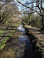 Drain, Treesmill Valley - geograph.org.uk - 1756577.jpg