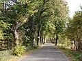 Droga w kierunku Guzek - panoramio.jpg