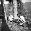 """Dva delavca (cimpermana) žagata smreko za """"rušt"""" za Broučevo klet 1954.jpg"""