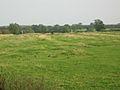 Eady's Farm, Barkestone Lane, Bottesford - geograph.org.uk - 64420.jpg