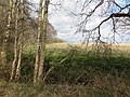 Edge of the Nature Reserve, Holme Fen - April 2016 - panoramio.jpg