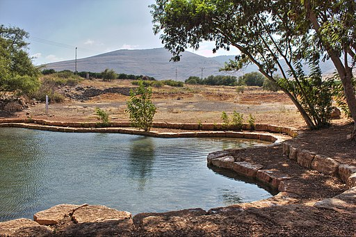 Ein Shokek spring, Israel (29627108655)