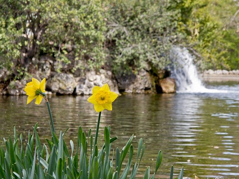 File:El Capricho - Jardín Artístico de la Alameda de Osuna - 52.jpg