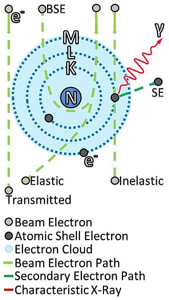 Electron scattering - Image: Electron beam interaction and transmission with sample