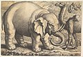 Elephant and Camel MET DP823911.jpg