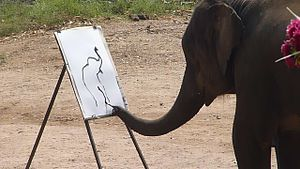 Animal-made art - A trained elephant painting in Chiang Mai.