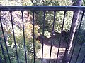En el balcón 1-arboretum lussich.JPG