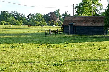 English: Englefield estate Some paddocks and g...