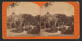 Entrance to Woodward's Gardens, San Francisco, Cal, from Robert N. Dennis collection of stereoscopic views 2.png