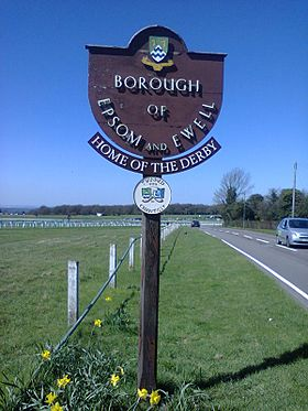 Epsom and Ewell entrance sign.jpg