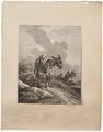 Equus asinus - 1700-1880 - Print - Iconographia Zoologica - Special Collections University of Amsterdam - UBA01 IZ21700115.tif