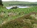 Eriff Plantation towards Loch Doon - geograph.org.uk - 853429.jpg
