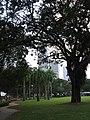 Esplanade Park, Aug 06.JPG