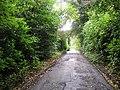 Estate road, Cromlix - geograph.org.uk - 948826.jpg