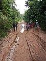 Etat route tshopo RDC.jpg