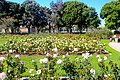 Exposition Park Rose Garden, Exposition Blvd. at Vermont Ave. University Park 16.jpg
