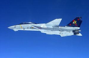 F-14B VF-11 Side View - 2005.jpg