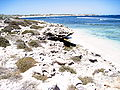 Fairbridge Bluff, Rottnest-12.jpg