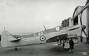 Fairey Firefly - Firefly T.3 observer trainer of 1841 Squadron in 1952