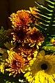 Fall Bouquet (22104863168).jpg