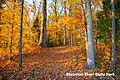 Fall at Staunton River State Park near point text (15342067290).jpg