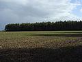 Farmland and Chase Wood - geograph.org.uk - 265744.jpg