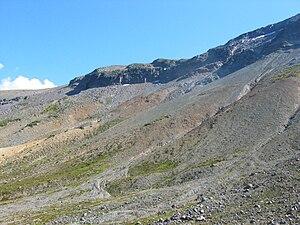 Fellfield - A fellfield in Mount Rainier National Park