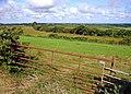 Fields near Llwynwernau, Llanarth - geograph.org.uk - 891828.jpg