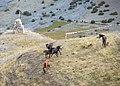 Fighting horses - Annapurna Circuit, Nepal - panoramio.jpg